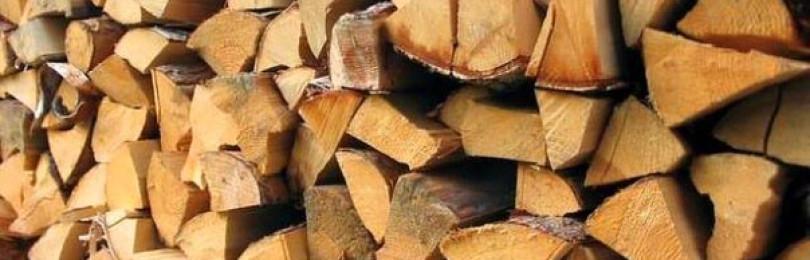 Какие дрова выбрать для топки?
