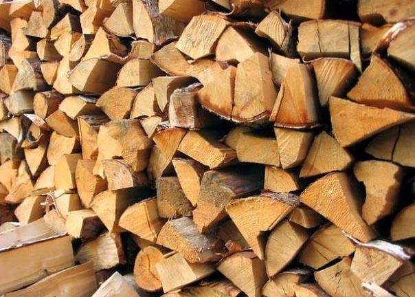 Какие дрова лучше выбрать для топки печи или камина