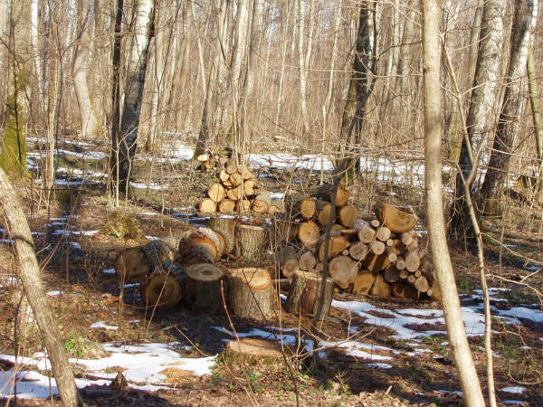 Заготовка дров для топки печи