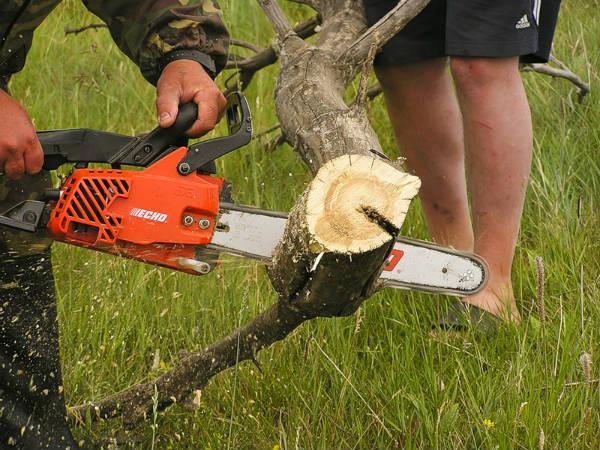 Заготовка дров, распиливание