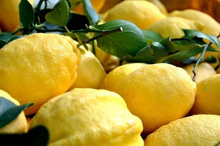лимончелло в домашних условиях на самогоне